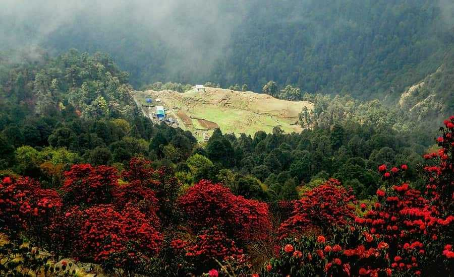Chopta during april month