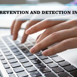 How Can Fraud Prevention and Detection Increase Profits?