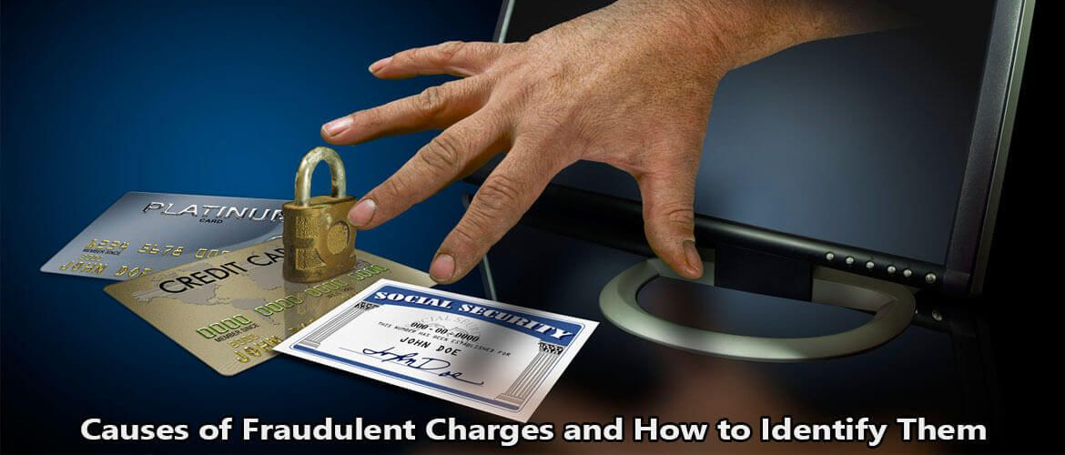 Causes_of_Fraudulent_Charges