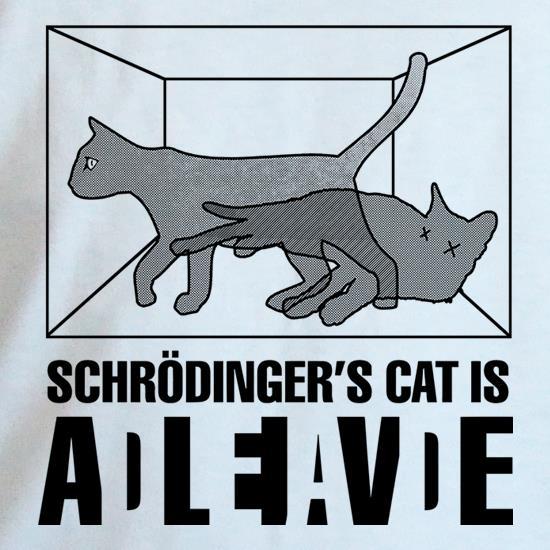 schrodinger s cat box