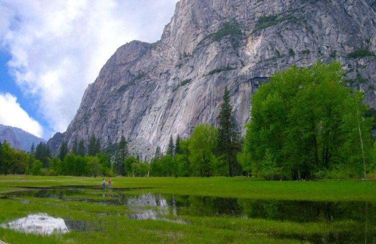 Yosemite valley, California, USA. 05