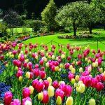 Butchart Garden Canada
