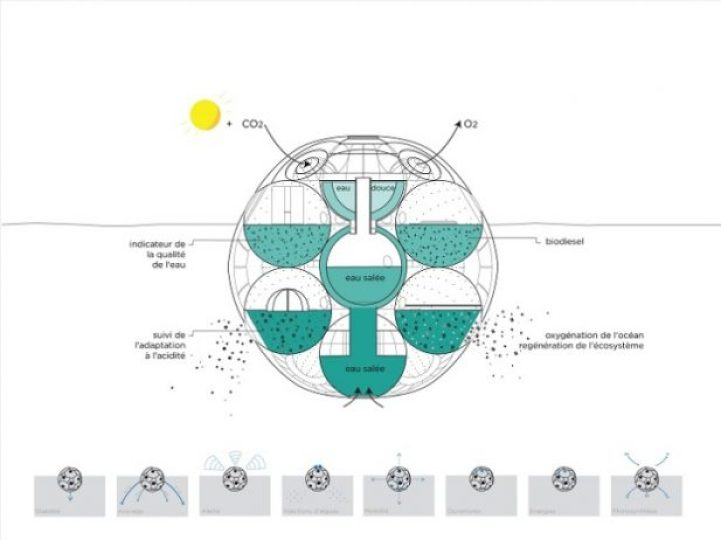 Floating Biodome Absorbs Carbon Dioxide, Emits Oxygen 4