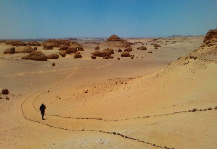 Wadi Al-Hitan (Whale Valley) Egypt13_resize