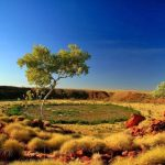 Wolfe Creek Carater; Australia