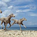 British Artist Created Incredible Life-Size Horses Out of Salvaged Driftwood