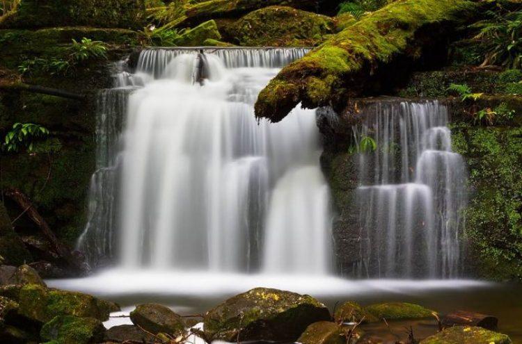 Elakala Falls Virginia5