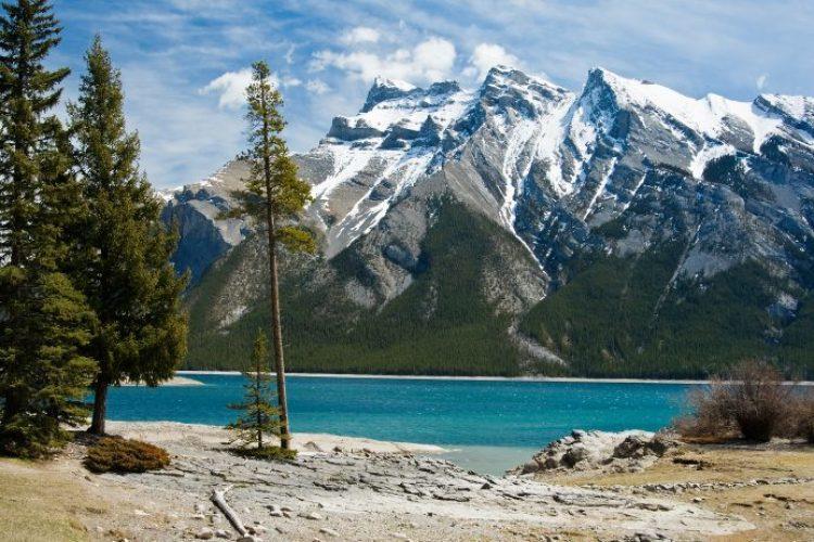 Lake url
