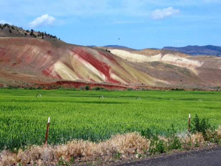 Painted Hills Oregon12