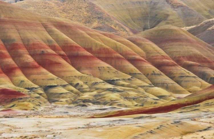 Painted Hills Oregon50