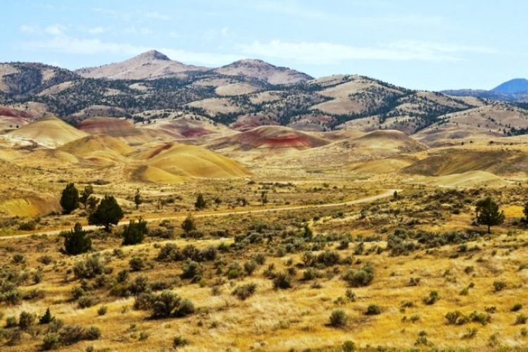 Painted Hills Oregon9