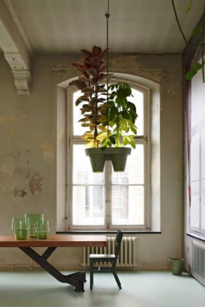Unique Space-Saving Light Design with Potted Plants3