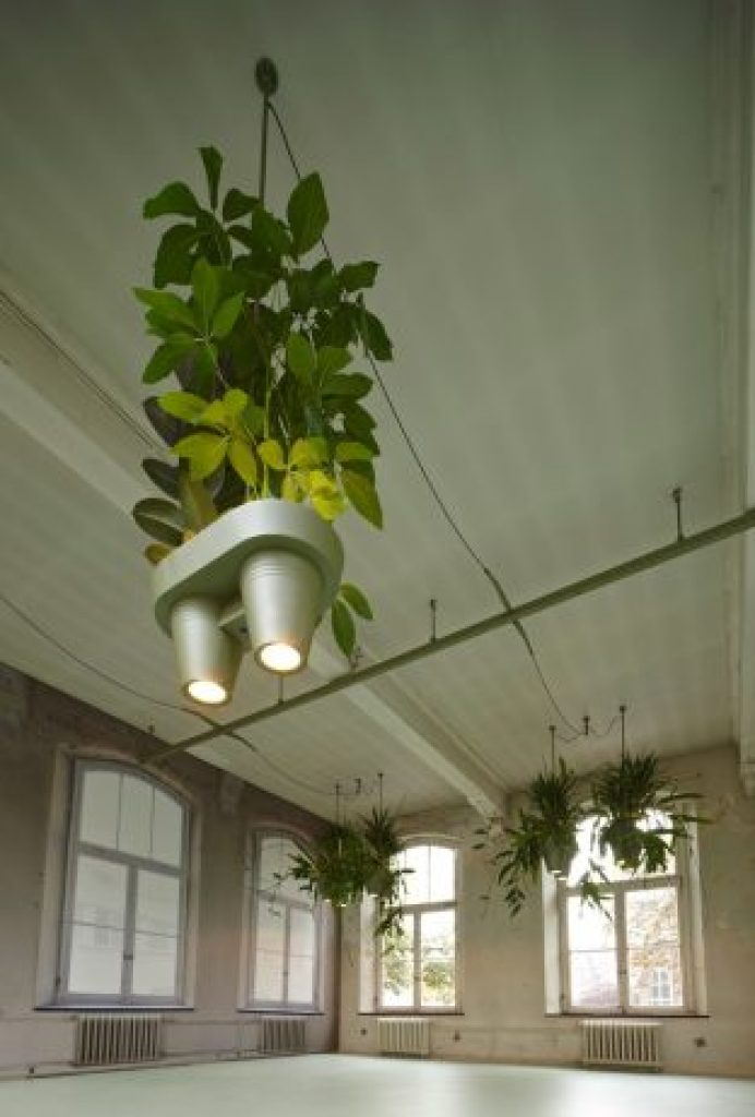 Unique Space-Saving Light Design with Potted Plants5