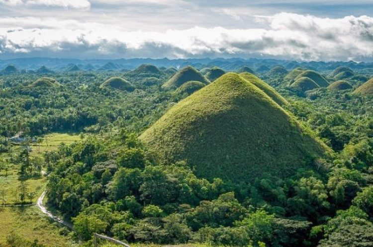 Chocolate Hills of Bohol Philippines2