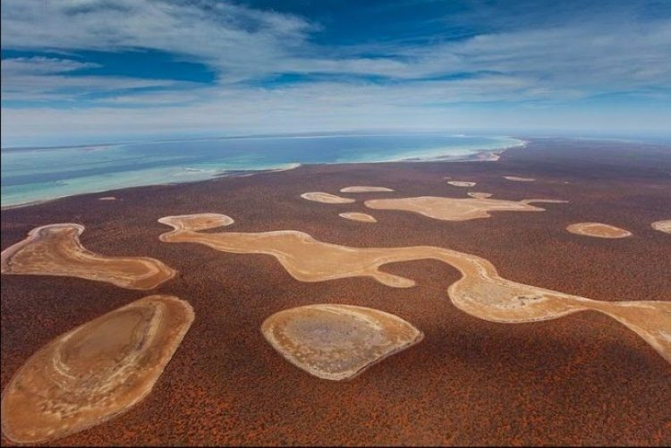 Gypsum Lakes or Birridas of Shark Bay