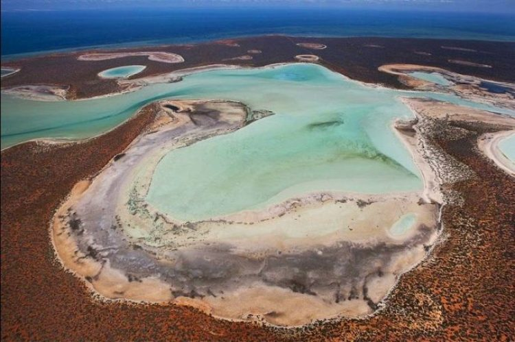 Gypsum Lakes or Birridas of Shark Bay5