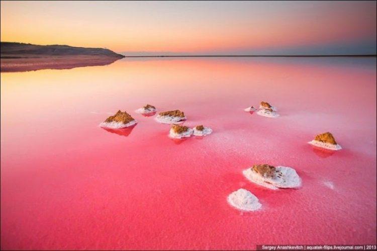 Sivash Salt Lagoons in the Crimean Peninsula12