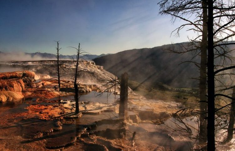 Crepuscular rays in steam from hot springs at Yellowstone National Park