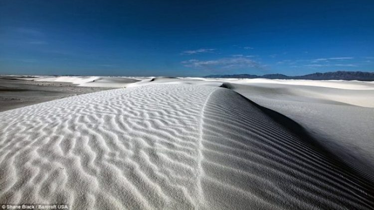 A beautiful sandy beach in 2013, New Mexico. Mr Black, 26, spent a total of two months completing the trip