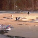 Waterballet – Shortcutz