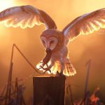 Amazing Owl Photographs Capture by Thai Photographer