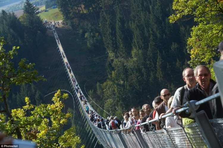 The rope bridge idea was first proposed in 2006 but plans were abandoned after they were deemed infeasible.