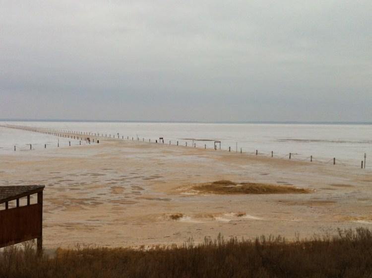 salt-plains
