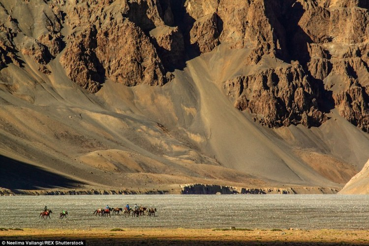 Nomads of Changthang plateau returning to their base after assisting a group with a week long hike in the high altitude region of Ladakh and Spiti