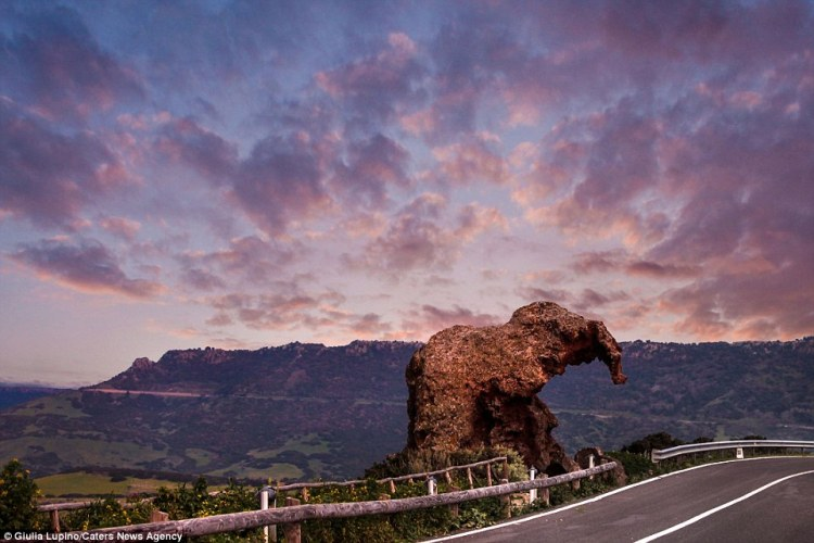 Lupino travelled down the State Road 134 to take pictures of the rock that she describes as a 'peculiarity' of her town