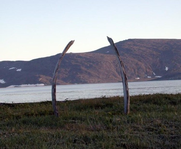 "Whale Bone Alley"" where once the great sea beasts were mass slaughtered and their meat stored by the local tribes."