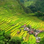 The Banaue Rice Terraces of Philippines