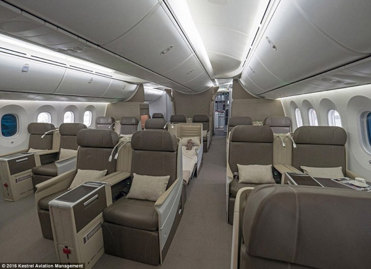 the-dream-jet-also-has-air-technology-built-in-to-reduce-travel-sickness-and-to-filter-germs-from-the-cabin-air-no-more-catching-a-cold-from-your-snivelling-seat-neighbour