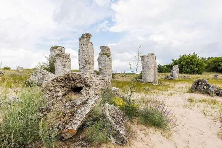 Further, millions of years later after the sea receded away; the erosion process of the limestone layer left the tall columns stuck into the ground.