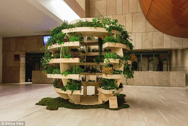"""""""Growroom"""" is a 9ft high piece of living furniture for growing plants, vegetables, Bonsai and herbs; it is made of just 17 sheets of plywood."""