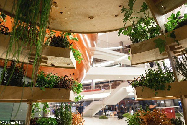"""The """"Growroom"""" was formed by Space10 a """"future living lab"""" supported by Ikea."""