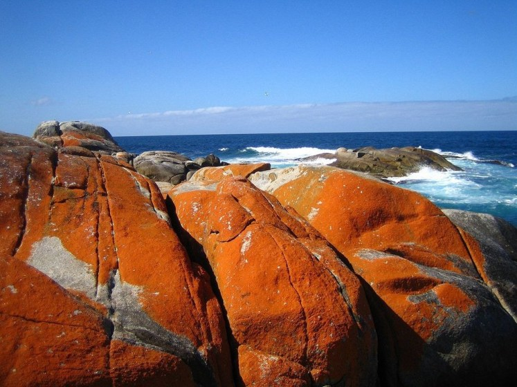 The name Bay of Fires is associated by him, when he saw bay is characterized by white beaches, blue water and enormous granite blocks that are colored bright orange by lichens.