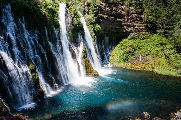 "Burney Falls is one of California's biggest surprises. It's no wonder 26th President Teddy Roosevelt dubbed it ""the eighth wonder of the world."""