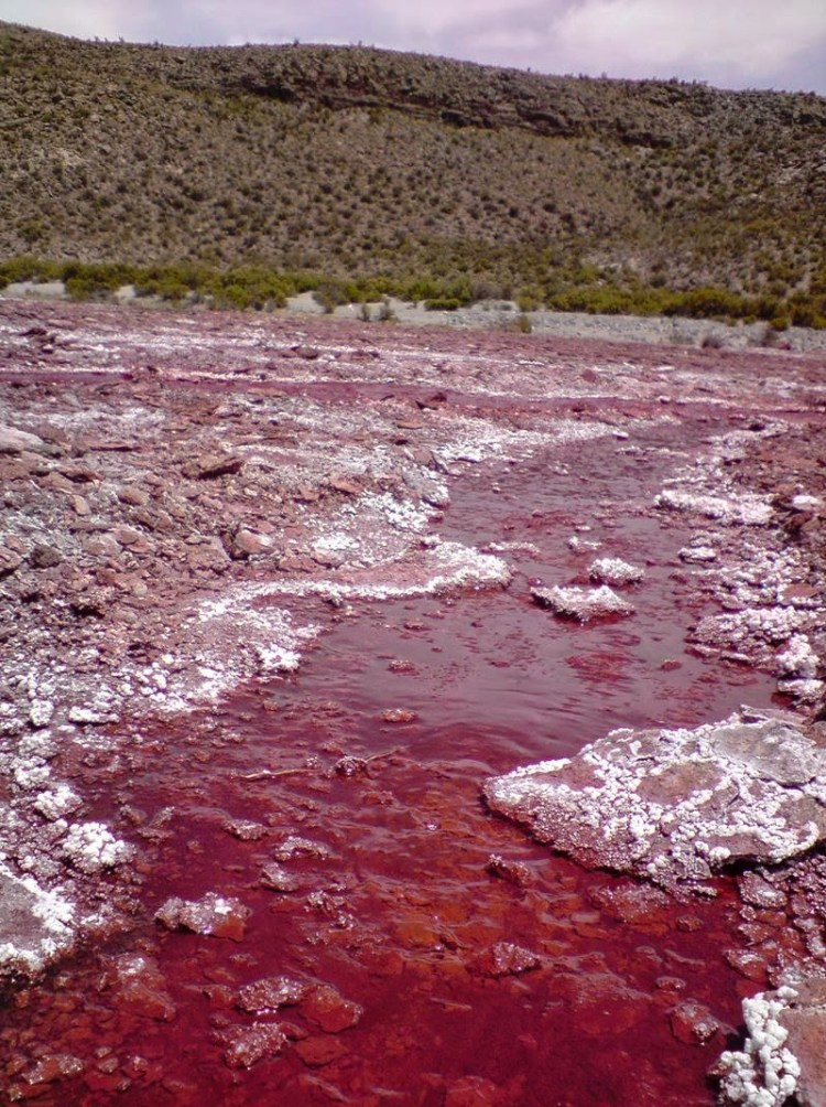 The mysterious curses that have been associated with Egyptian tombs, actually red pool is possesses by a curse that affects those who approach its red waters.