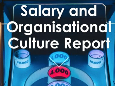Salary and organisational culture report