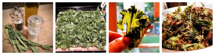 Crispy Kale Collage