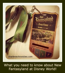 New_Fantasyland_Review