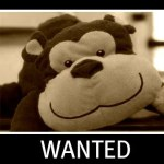 Wanted: One Plunk-a-Doodle Monkey