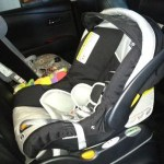 Car Seat Changes | New Rules