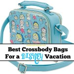 Best Crossbody Bags for Disney Vacations