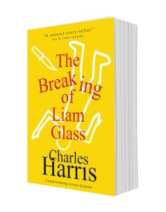 The Breaking of Liam Glass - out now - BookBub recommendation