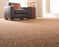 Road Test, Part 1: The Home Depot's Platinum Plus Carpet