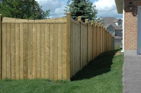 fence posts.jpg