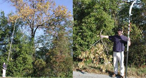 pole-saw-tree-limbs.jpg