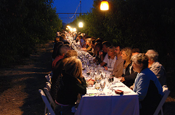 schnepf-farms-orchard-dinner.jpg