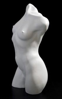Female-Torso,-left-side